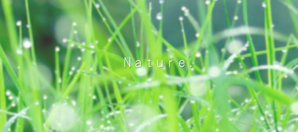 要能維護大家的健康,特別在這食安氛圍凝重的時期,利用天然的螯合因子,幫助大家打造最佳的體內環境,可以抵抗外來的五毒入侵。(五毒:重金屬、農藥、塑化劑、清潔劑、防腐劑) 由天然的植物萃取,打造抗癌的飲用的天地,讓大家可以保護身心健康,抵抗外物的入侵,強化由內而外的身體健康!